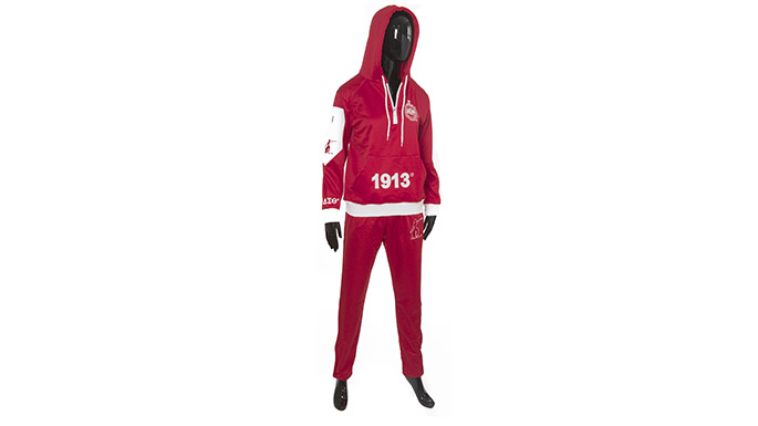 DST Hoodie Pullover Sweatsuit